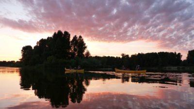 Canoe sur la Loire - S. DUCHESNE