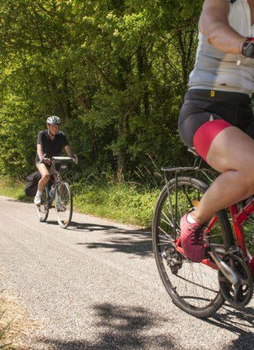 Échappées à vélo au cœur des vignes de Montlouis