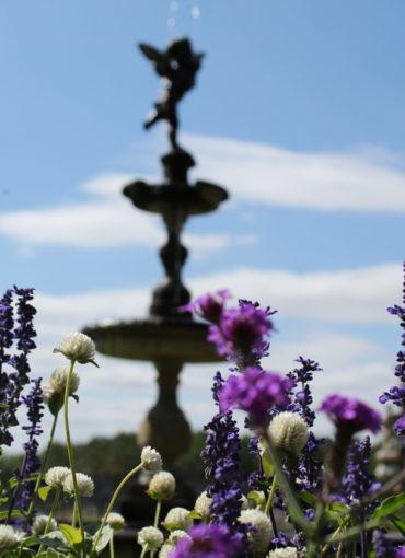 Rendez-vous aux Jardins au Château de Valmer à Chancay
