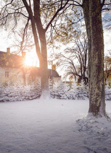 Forteresse royale de Chinon Noël au Pays des Châteaux