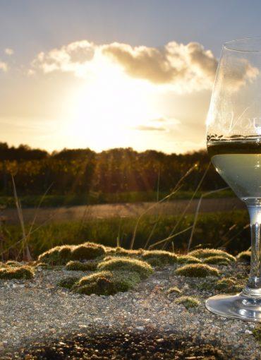 Verre de vin vouvray au coucher de soleil